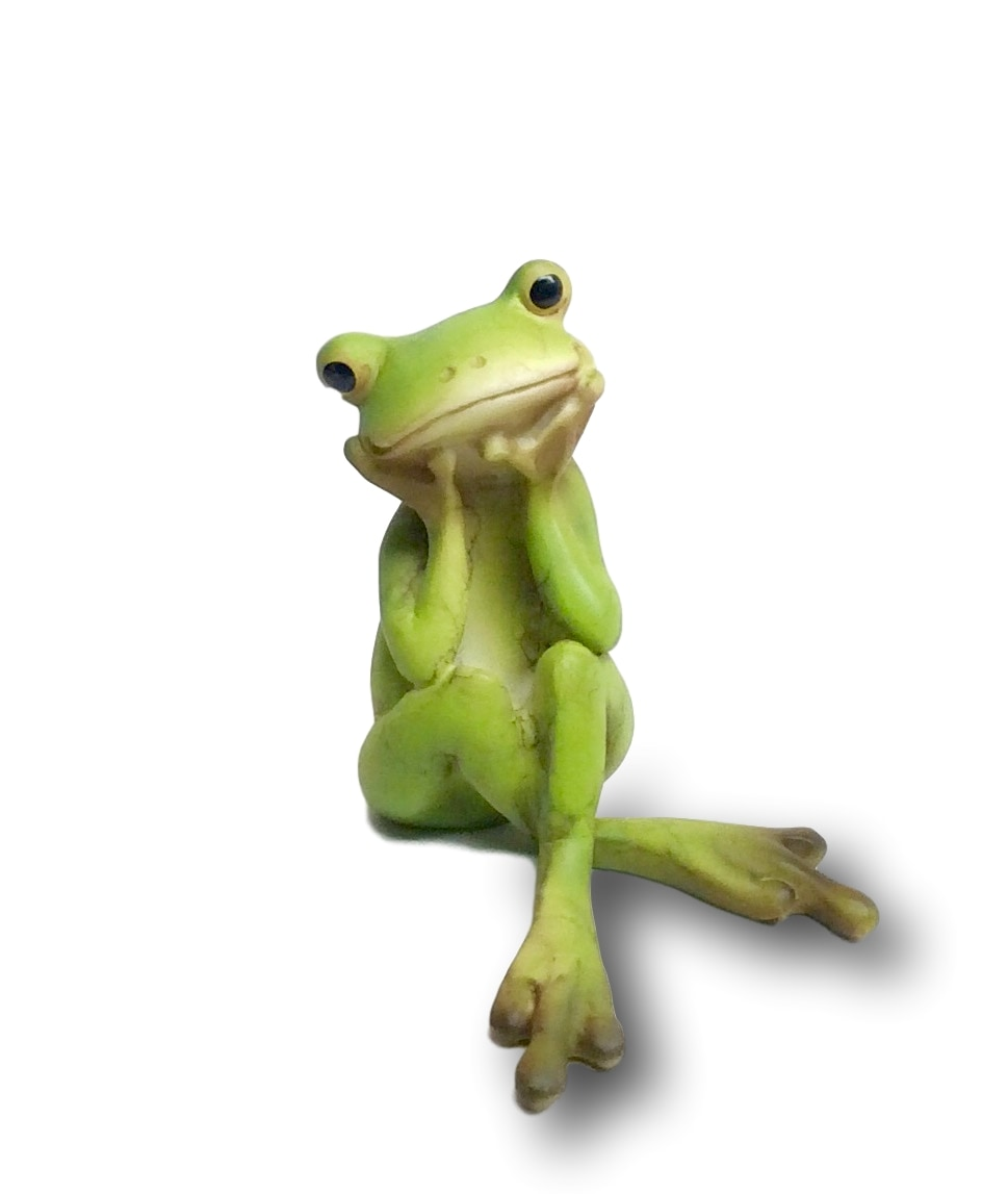 Frog in Thought