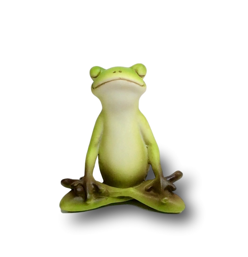 Meditation Frog